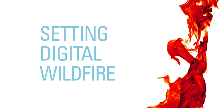 Setting Digital Wildfire